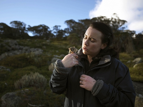 Dr Hayley Bates holds a Mountain Pygmy-possum