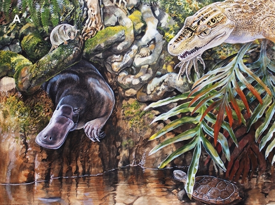 Artwork showing Mountain Pygmy-possum ancestor among other prehistoric animals