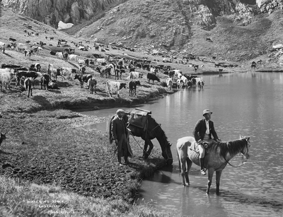 Cattle grazing at the edge of Club Lake with two horsemen in the foreground