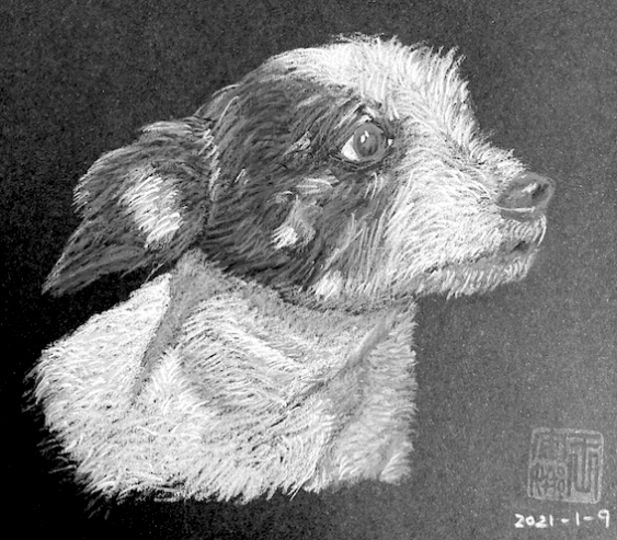 Anna Wang sketch of Chip the dog