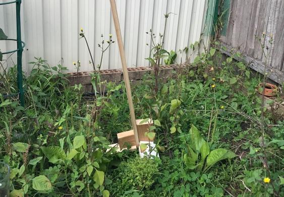 Wooden lever weeder prototype