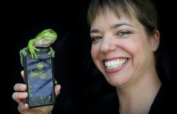 frog_app_launch_2a2a0548.jpg