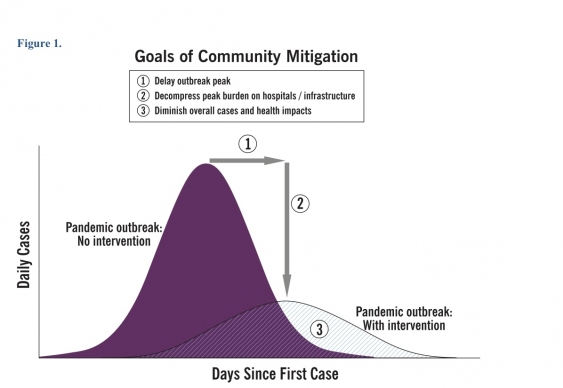 Goals of community mitigation. CDC, 2007.
