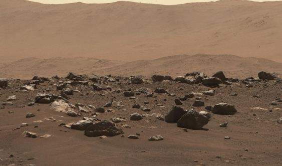 Surface of Mars image from Perseverance Rover