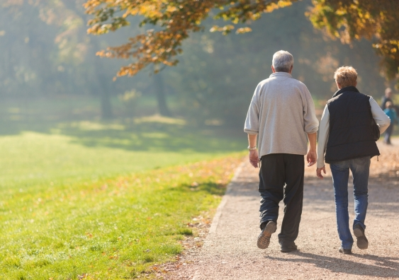 An elderly couple walking in the park.