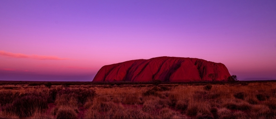 Uluru at sunset (Photo: copyright Indigenous Law Centre)