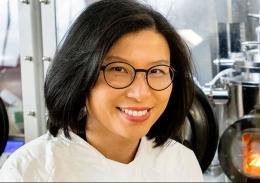 Professor Anita Ho-Baillie in the lab