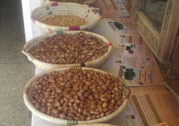 Moroccan argan nuts and shells in bowls