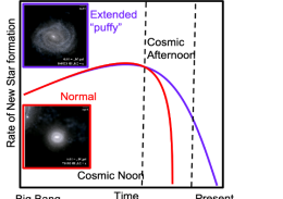 how extended or 'puffy' galaxies continue to make stars longer into the cosmic afternoon than compact ones