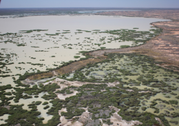 Upstream of the Bulloo Overflow, the Bulloo River reaches the Bulloo Lakes in Queensland before flooding into New South Wales