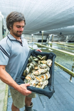 Mathew Skye is now working as General Manager at an abalone farm in Bremer Bay.