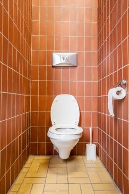 19_simple_toilet_shutterstock.jpg