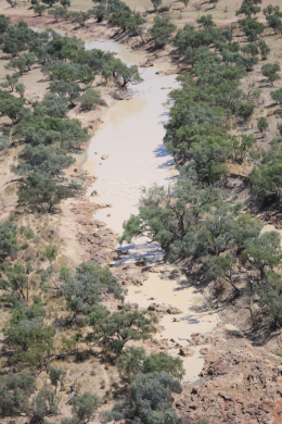 The Bulloo River in a dry time, supplying water to the Bulloo Overflow