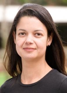 Dr Andrea Taschetto