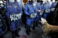 Greek dogs