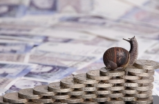 snail money