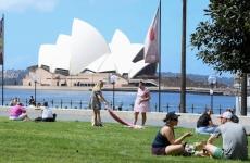 People gather for picnics near Sydney Opera House