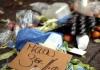 27 food waste crop