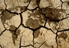 29_climate_change.jpg