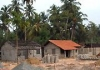 Sri lanka web