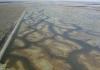 gayini wetlands
