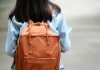 bigstock-back-of-student-girl-holding-bag.jpg
