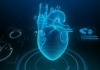 a human heart in virtual reality