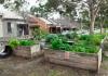 community garden melbourne