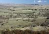 Southern Tablelands grasslands
