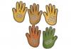 Hands activity
