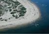 Small pelican breeding colony on Lake Wyara