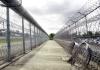 razorwire fences at a prison