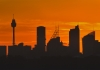 sydney city cbd silhouette