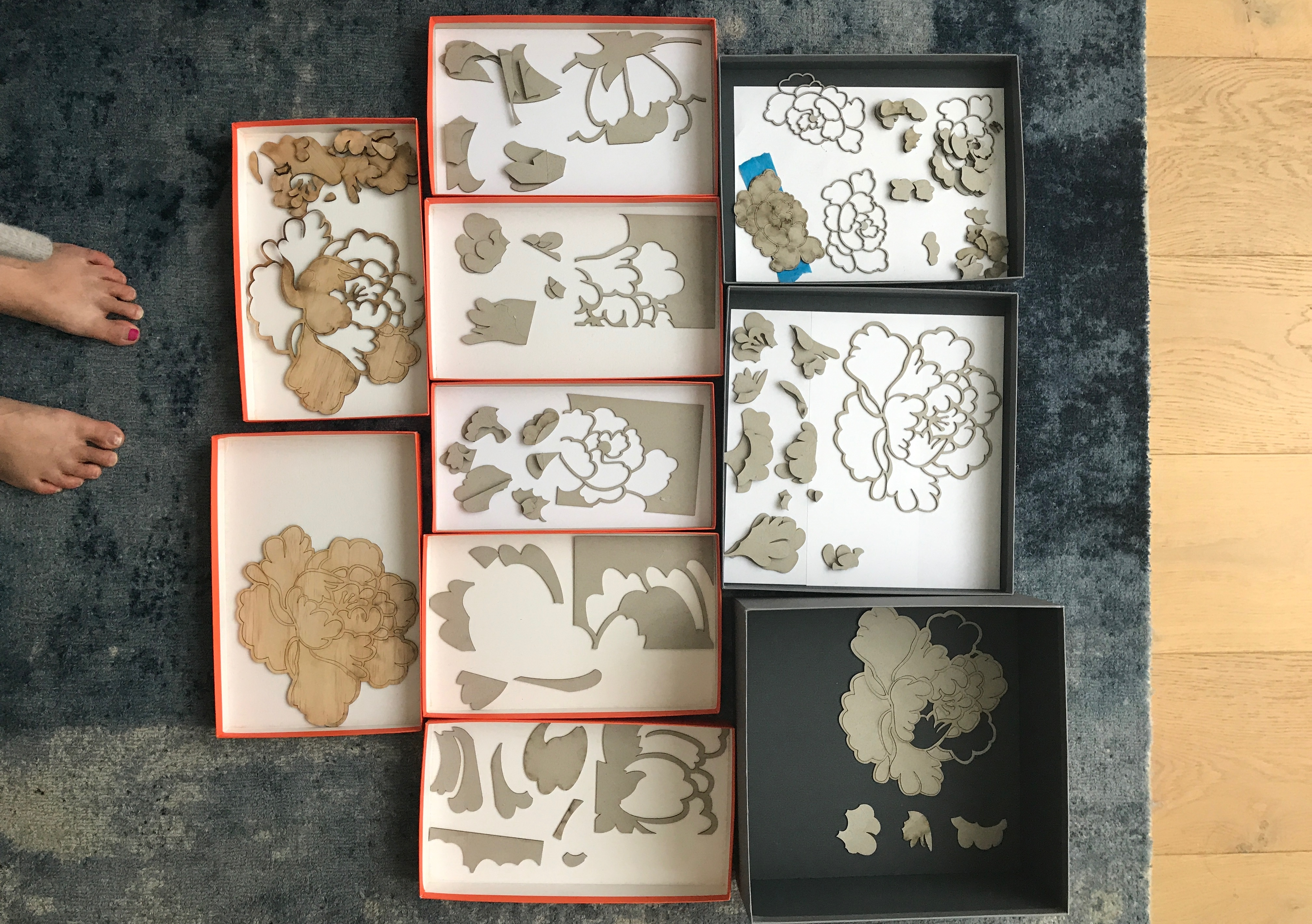 Studies of laser-cut peonies in boxes on the floor
