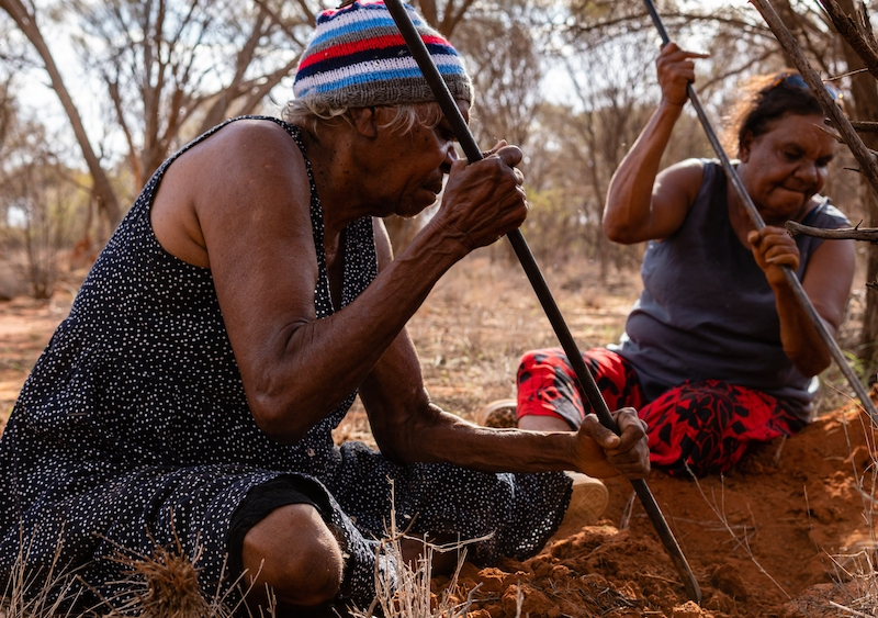 Indigenous groups and others need information so they can negotiate. Photo: Shutterstock.