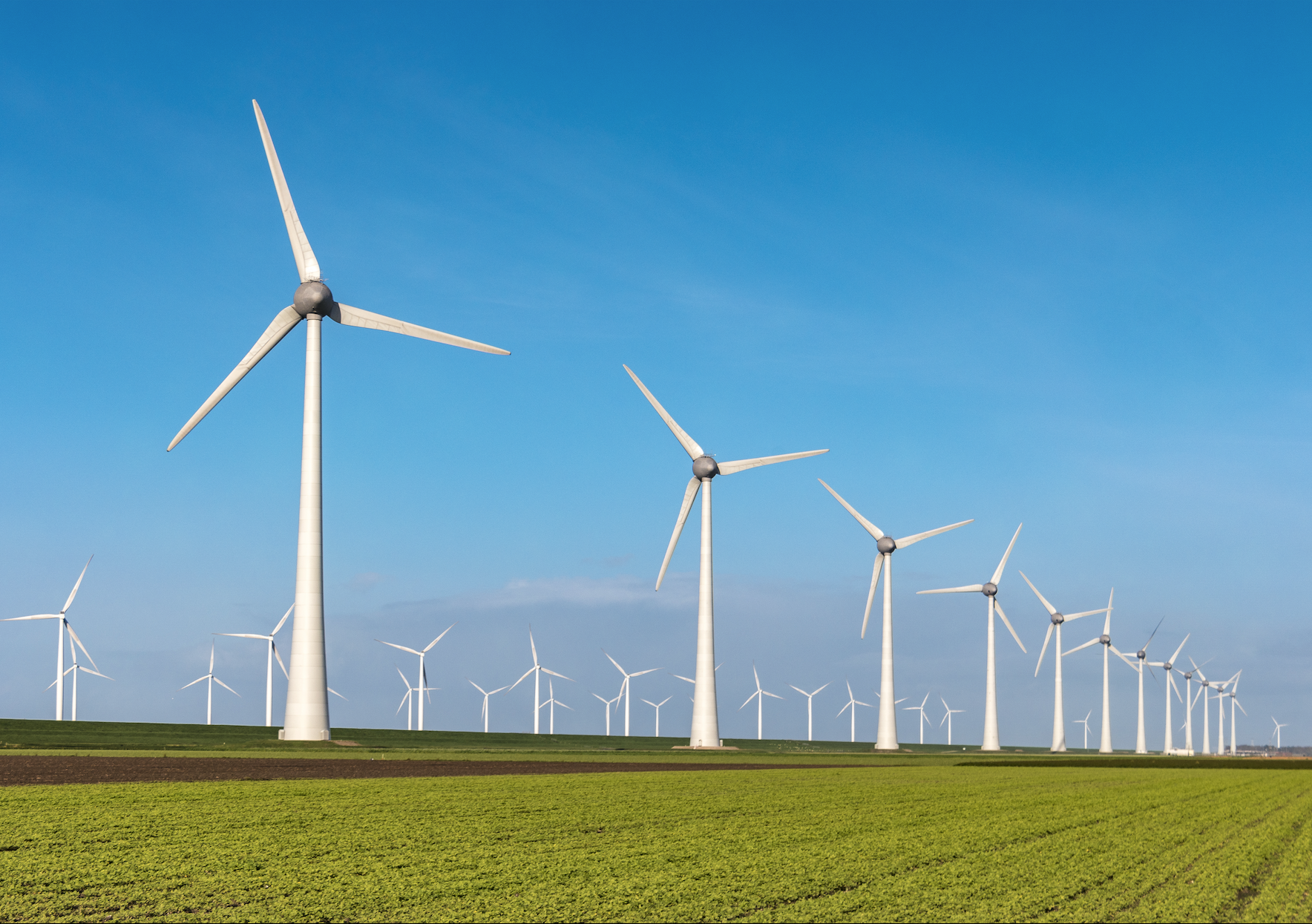 NSW and a renewable energy policy: we need one
